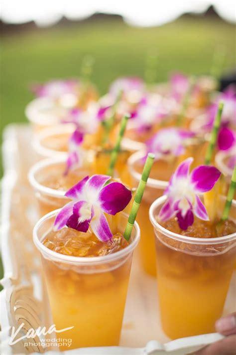 hawaiian island lesbian  gay wedding packages purple