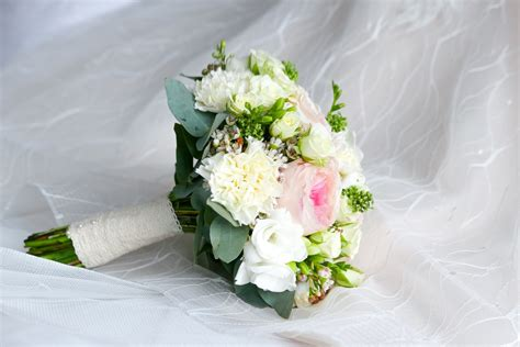 wedding bouquet pictures   images  unsplash