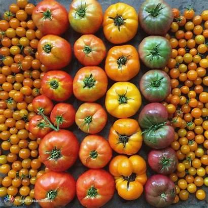 Seeds Vegetable Organic Garden Grow Diet Vegetables