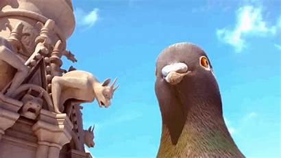 Pigeon Giant