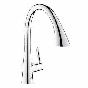 Grohe Ladylux Pull Out Kitchen Faucet Parts