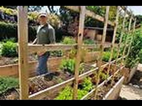 Farming In Your Backyard by The Best Backyard Farming Channels