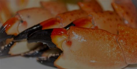 stone claws crab august contest eating beach th crabs