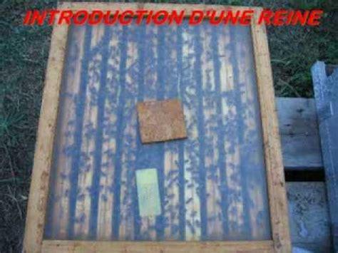 couvre cadres transparent pour une apiculture de loisir