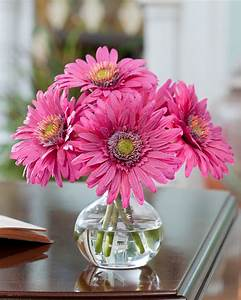 Buy Silk Gerber... Silk Flowers