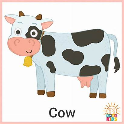 Animals Flashcards Printable Cow Russian