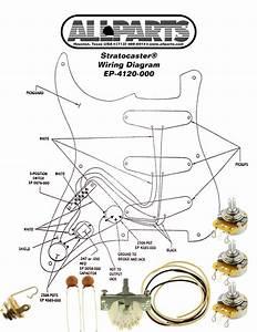 Wiring Kit For Stratocaster
