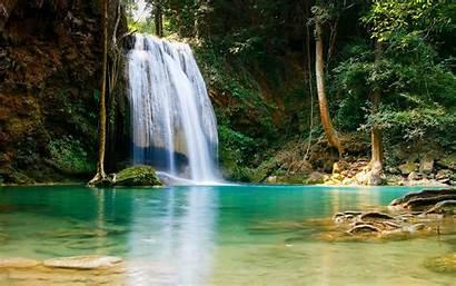 1080p Wallpapers Desktop Dense Waterfall Forest Animals