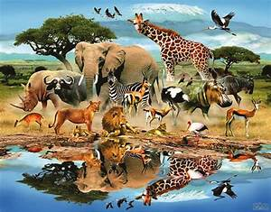 ماذا تعرف عن طبائع الحيوانات وغرائبها
