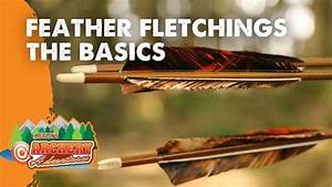 Feather Fletchings The Basics  How To Identify Right And
