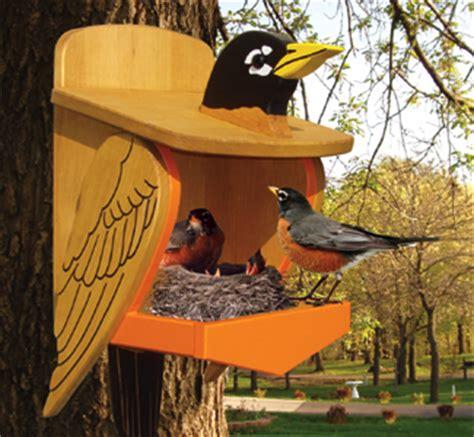 woodwork birdhouse plans robins  plans