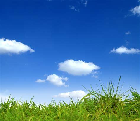 gruene wiese und blauer himmel  sanitaer und