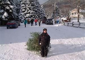 Un Noel Memorable : ferme st adolphe sapins de no l stoneham qu bec ~ Melissatoandfro.com Idées de Décoration