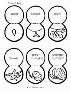 Life Cycle Of A Pumpkin Sequencing Worksheet by 10 Halloween Themed Lesson Plans Lesson Plans