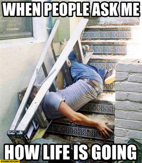 Ladder Meme - when people ask me how life is going fallen off the stairs ladder starecat com