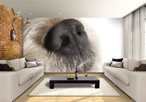 dog nose custom wallpaper mural print  jw shutterstock