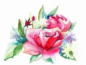 Beautiful Roses flowers, Watercolor painting | Stock Photo ...