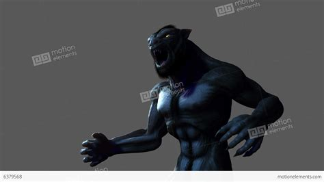 Werewolf Transformation With Alpha Matte Stock Animation