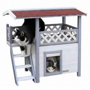 Cabane Pour Chat Exterieur Pas Cher : maison pour chat ext rieur pet elevage ~ Teatrodelosmanantiales.com Idées de Décoration