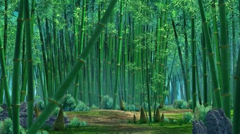 bamboo forest   cgtrader
