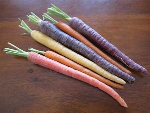 Carrots A Colourful History From Purple To Orange