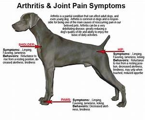 What are some Alternatives to NSAIDs for Pain Relief in my ...