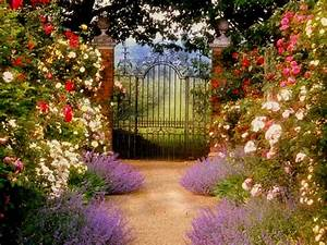 House Garden Gate Wallpaper HD Wallpaper Wallpapers Amp ...