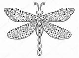 Dragonfly Coloring Adults Vector Outline Mandala Drawing Adult Zentangle Lace Getdrawings Stress Anti Royalty Illustration Preview sketch template