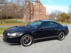 2001 Ford Mustang Bullitt - The Morning Call