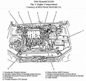 2001 Hyundai Xg300  Where Is The Thermostat Located On My