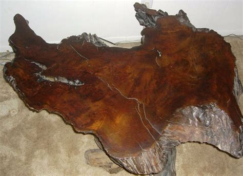 antique  growth redwood burl wood coffee table