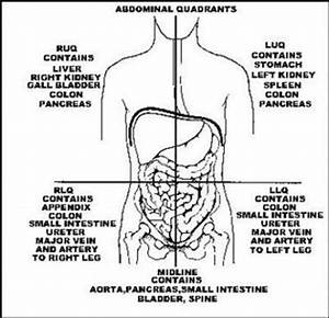 Abdominal Masses in the Neonatal Period | Pediatrics ...