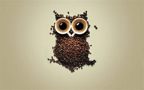 Owl, Coffee, Coffee Beans, Creativity, Birds, Animals Cold Brew Coffee Using Hot Water Stronger Bonavita Maker Shutting Off Pressed How To Smoothie India Before Game Price Barcelona