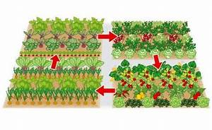 Gemüsegarten Anlegen Beispiele : kleine fl che gro er ertrag ein gem sebeet clever planen ~ Watch28wear.com Haus und Dekorationen