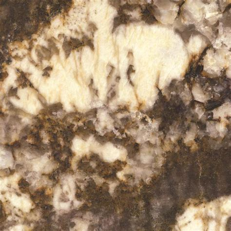 Shop SenSa Brown Persa Granite Kitchen Countertop Sample