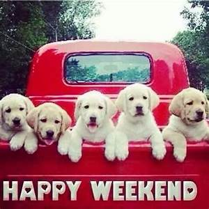 Happy Weekend De : the puppies wish you a very happy weekend gift ideas and greetings pinterest animaux ~ Eleganceandgraceweddings.com Haus und Dekorationen