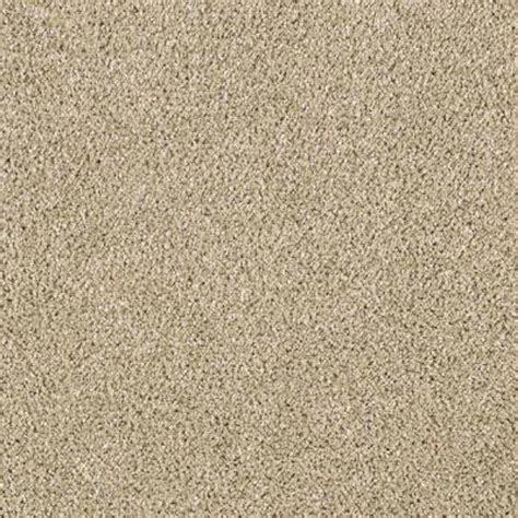 brown and area rugs lifeproof carpet sle pagliuca ii color stepping