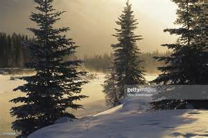 Kootenay National Park British Columbia Canada