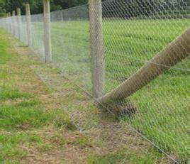 l post height ideas rabbit proof garden fencing lovetoknow