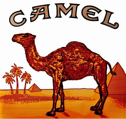 Camel Cigarettes Cigarette Transparent Advertising Logos Winston