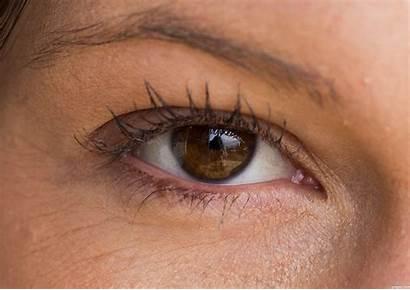 Eyes Brown Pretty Eye Closeup Really Friiskiwi