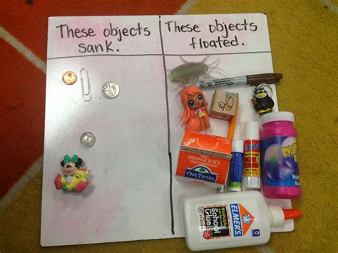 Science Fair Projects For 5th Graders Troi S 5th Grade