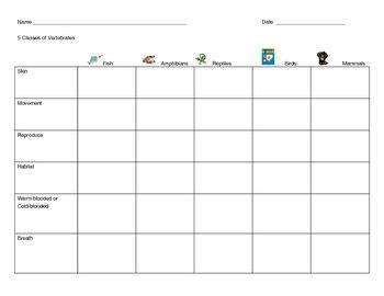 5 Classes of Vertebrates Chart Classes of vertebrates
