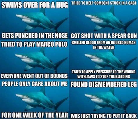 Shark Memes - writing about writing and occasionally some writing misunderstood shark is misunderstood