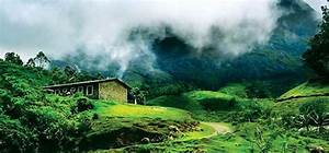 Munnar Voted As The Best Destination For Romance  Best