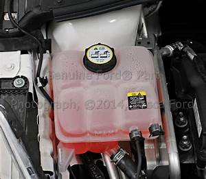 Brand New Oem Coolant Overflow Tank Ford Focus Escape C