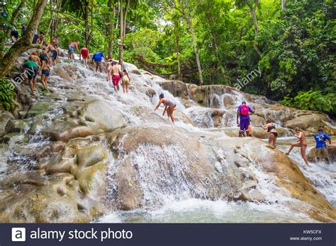 Tropical Forests Stock Photos & Tropical Forests Stock
