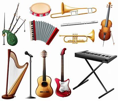 Instrument Musical Types Different Vector Illustration Clip