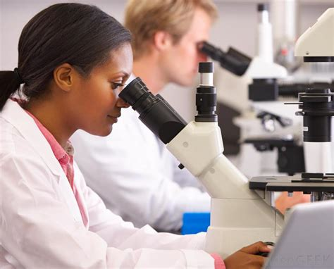 Laboratory Scientist Salary by What Are The Different Types Of Laboratory