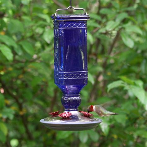 pets hummingbird feeders pet 8117 2 cobalt blue antique bottle